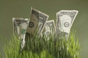 Безработная казахстанка присвоила через финансовую пирамиду более 200 тысяч долларов