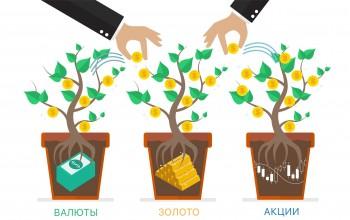 Успешный доход от инвестиций для начинающих