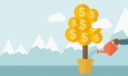 Что такое реинвестирование прибыли?