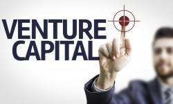 Выгодно ли венчурное инвестирование?