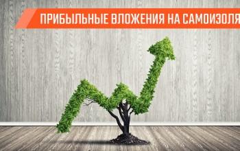 4 актива, в которые стоит вкладывать в кризис