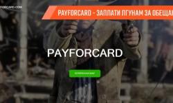 PAYFORCARD или как заплатить лгунам за обещание