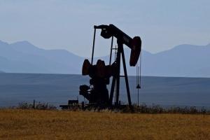 Главы ОПЕК проведут совещание для корректировок нефтедобычи с учётом коронавируса
